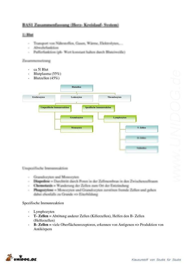 BAS1 Funktionen von Kreislauf und Atmung