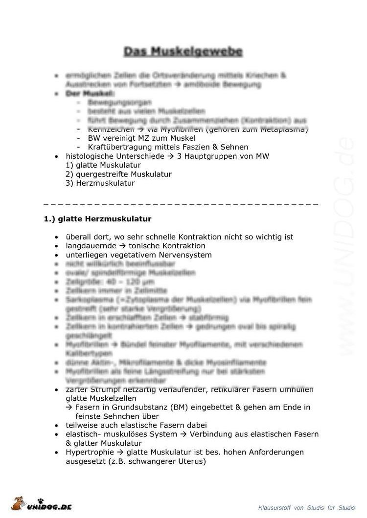Histologie - Muskelgewebe